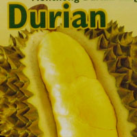Frozen durian bought in Helsinki, Finland